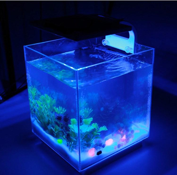 Wholesale Aquarium led nemolight quality black diamond stingrays ...