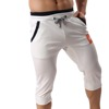 2017 Newly Professional custom Wholesale Plain Sweat Short Mens Fleece Short Blank Cotton Shorts