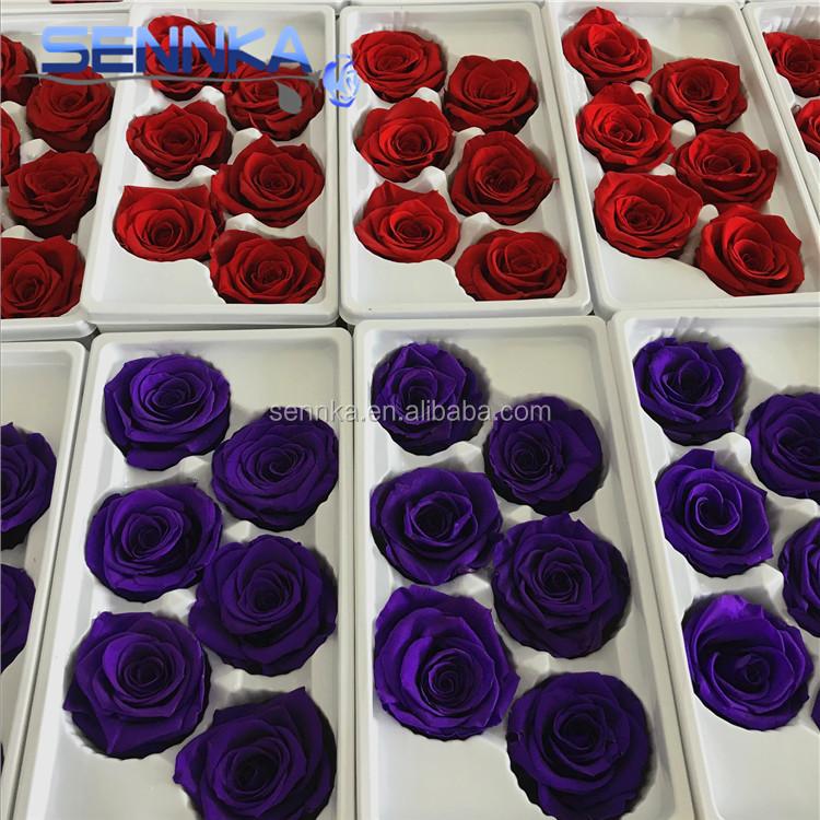 Weihnachten Beste Wünsche Großhandel Blumen Erhalten Holland Rosen ...