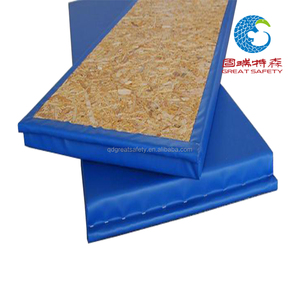 Top quality cheap foam wall padding for gym