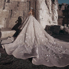 Oem custom made long train long sleeve champagne color luxury ball gown wedding dresses bridal gown for women