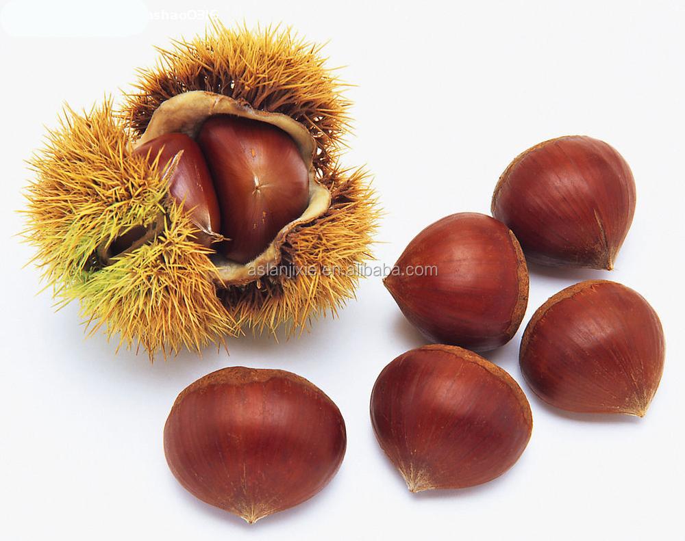 chestnut peeling machine