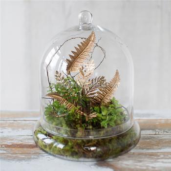 Garden Dome Cloche Terrarium Glass Vase For Plants Buy Terrarium