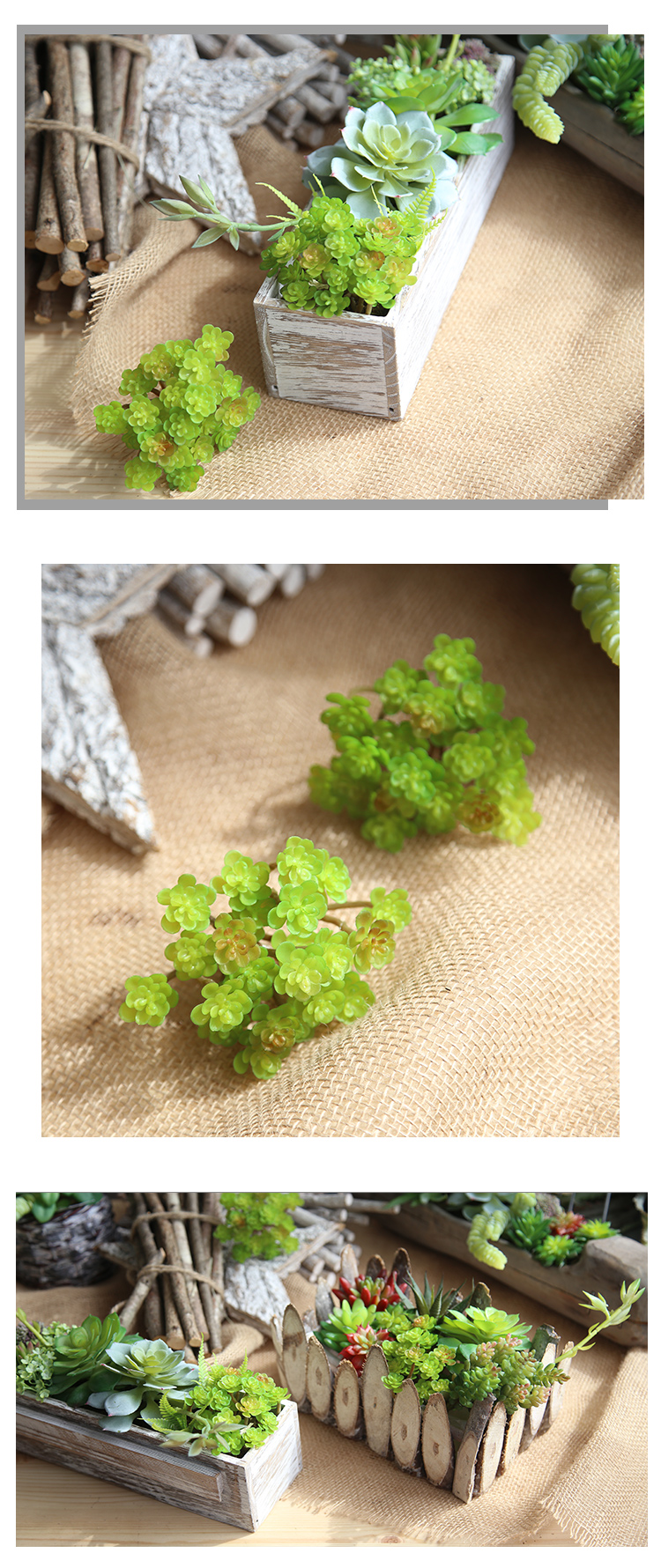 high quality decoration low cost handmade succulent plant