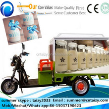 Electric van cargo tricycle /cold drink/milk/ice cream/fish/meat deliver car