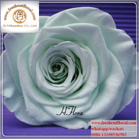 Single Stem Preserved Flowers Singapore For Sale Four Seasons For Flowers Online
