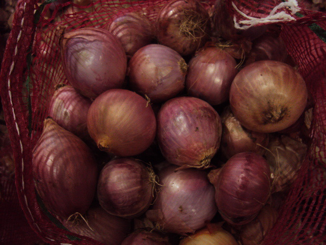 wholesale Fresh Onion/Yellow Onion/red onion exporters in china