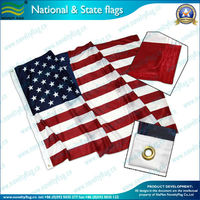 Flying U.S.A national state flag (NF05F06003)