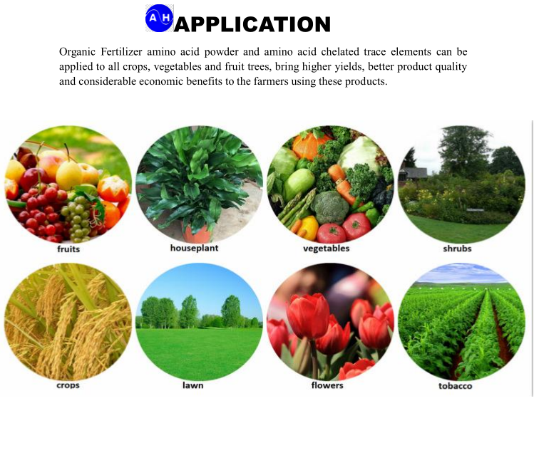 Powder State Amino Acid Chelate Molybdenum Organic Fertilizer