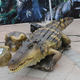Life Size High Simulation Moving Crocodile Animatronic Animal for Sale