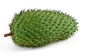 Fresh Guanabana (Soursop) Fruit (1-2lb) Set of 3