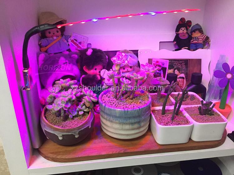 Newest Usb Led Grow Light 3w Grow Led Light For Succulent Plants ...