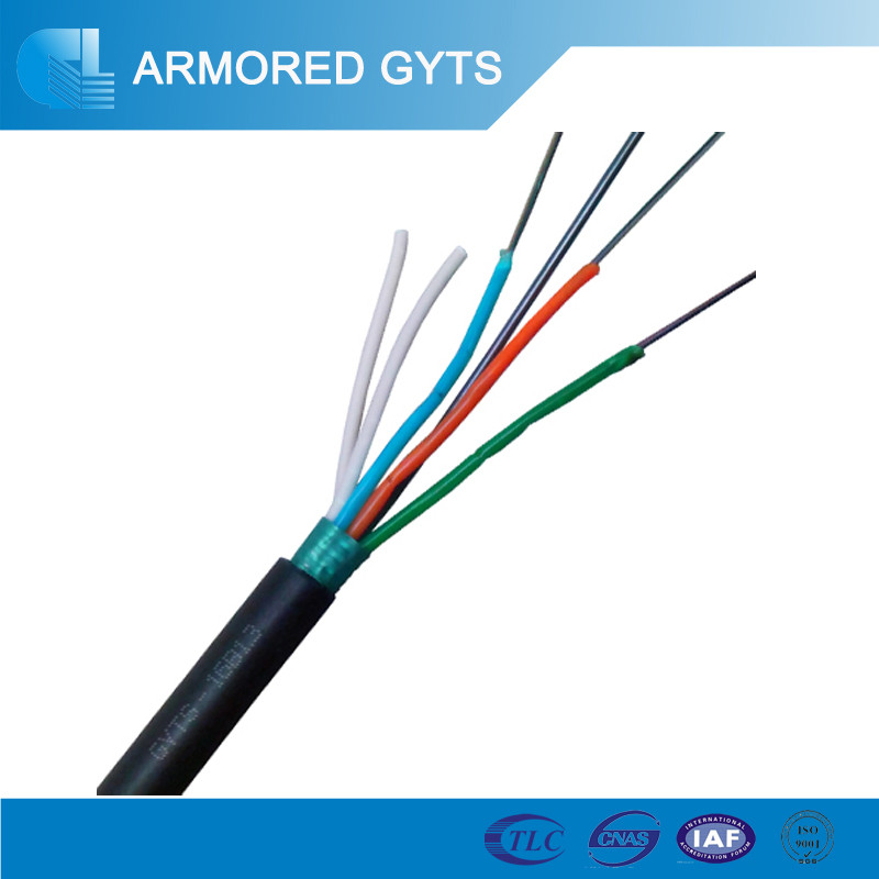 Outdoor aerial or duct armored g652d optic fiber 8 core