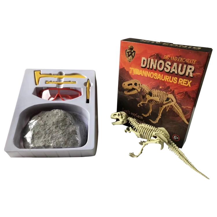 Wholesale Excavation Toys Fossil Dinosaur Skeleton Dig Kit Educational Toys  Kids - Buy Educational Toys Kids,Dinosaur Dig Kit,Dinosaur Fossil Dig Kit