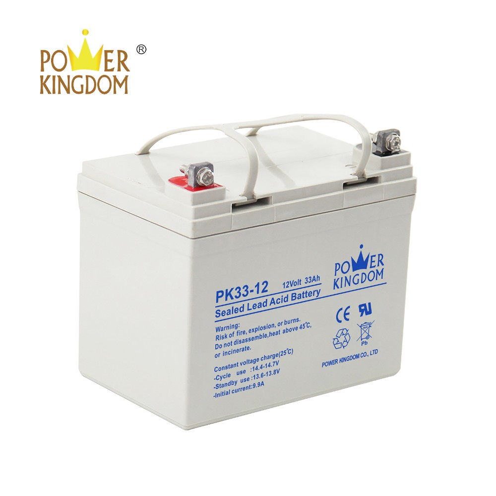 Power Kingdom advanced plate casters t gel battery factory price solar and wind power system-3