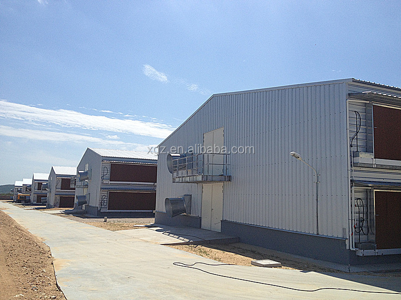 prefab chicken farm building and automatic controlled poultry farm shed