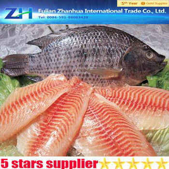 Seafood Frozen Tilapia Fish Fillet,Frozen Tilapia Fillet Price On ...