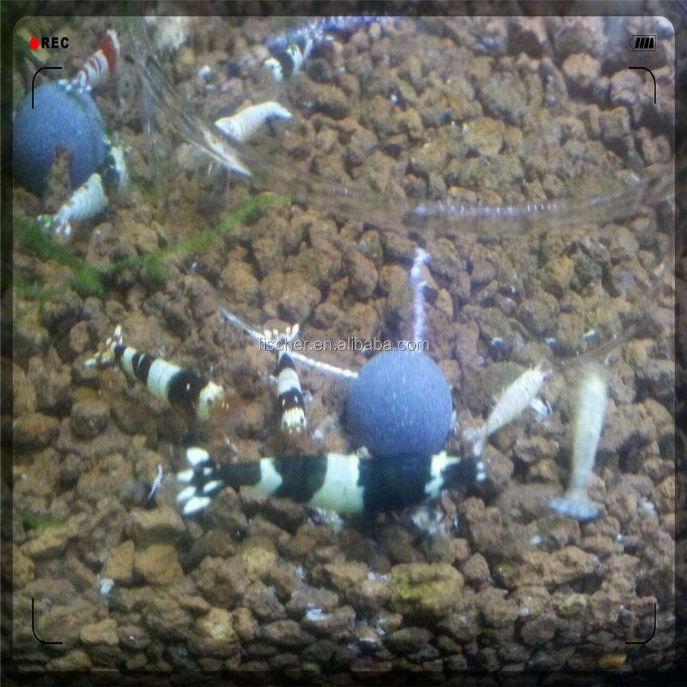 Ingrosso vendita calda acquario gamberetti cristallo sfera for Acquario vendita