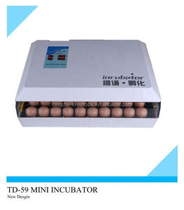 Wholesaler small egg incubator/couveuse WQ-59/mini chicken egg incubator for sale in China