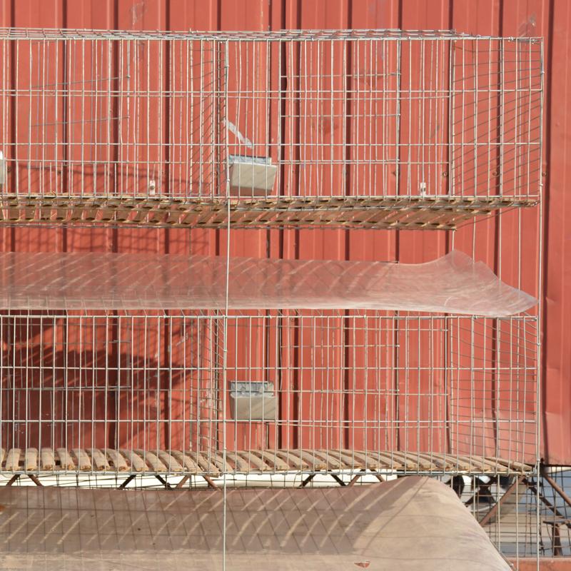 Finden Sie Hohe Qualität Industriellen Kaninchen Käfig Hersteller ...
