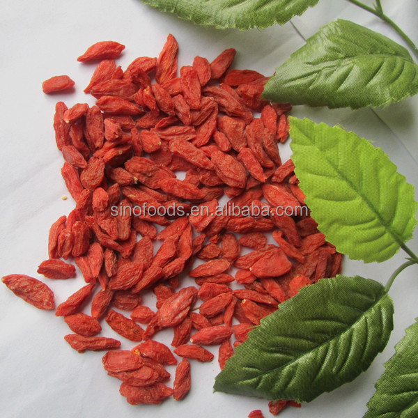 500pcs Scutellaria Baicalensis plante chinoise Graines