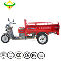 3 wheel Hatchback Cheap Delivery High performance mini electric bicycle mini electric tricycle price