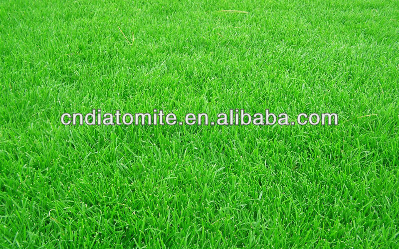 diatomite soil amendment for building good lawns and turf