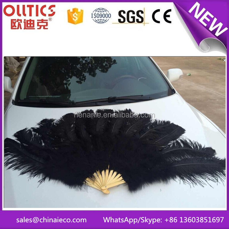 Wholesale dyed colors large fluffy ostrich feather fan