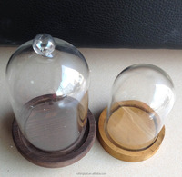 Glass bell jar, with wooden base