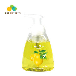 Manufacturing process lemon fruit raw material liquid hand wash