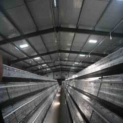 Factory price direct sale poultry farm house design automatic poultry cage chicken layer