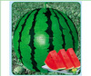 Stock quality chinese vegetable seed/water melon seeds THS414 WITT 20 gram seeds/Bag
