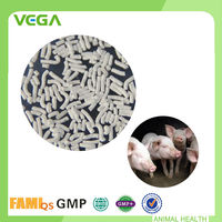 Feed Additives Top quality Blend Animal Drug Water-Soluble Florfenicol 20% Powder