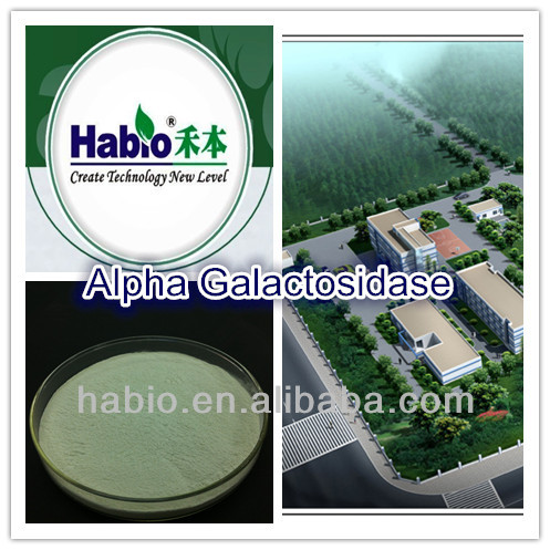 alpha-galactosidase, brewing industry