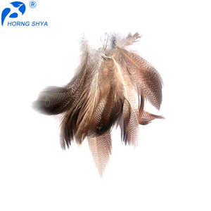 Horng Shya Feather Crafts Wholesale Top Selling Natural Washed or Dyed Customized White Duck Down Material Feathers for Sale