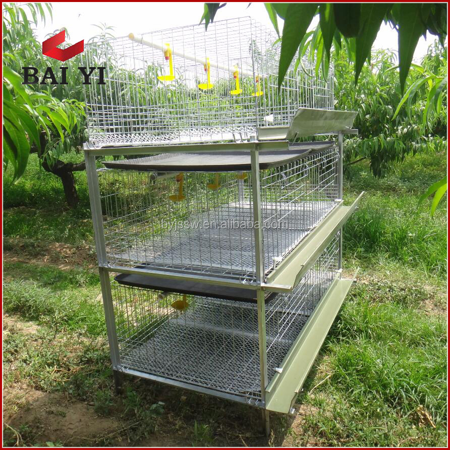 Cage For Growing Broiler/Meat Chicken Cage /Broiler Battery Cage