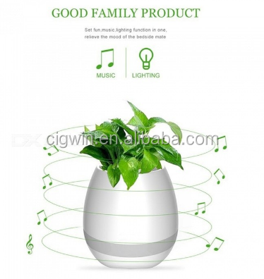 The highest cost of the highest quality products bamboo flower pot holder