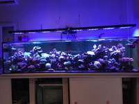 Malibu S400 led aquarium light black and silver color Intelligent system full sizes 400w marine tank sunrise