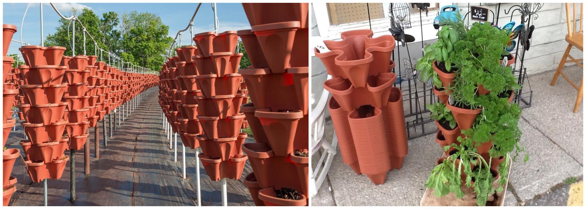 वाणिज्यिक स्ट्रॉबेरी बागान बर्तन खड़ी बर्तन टॉवर