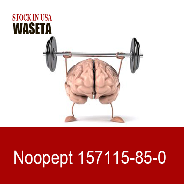 High Quality Nootropics noopept powder/capsule