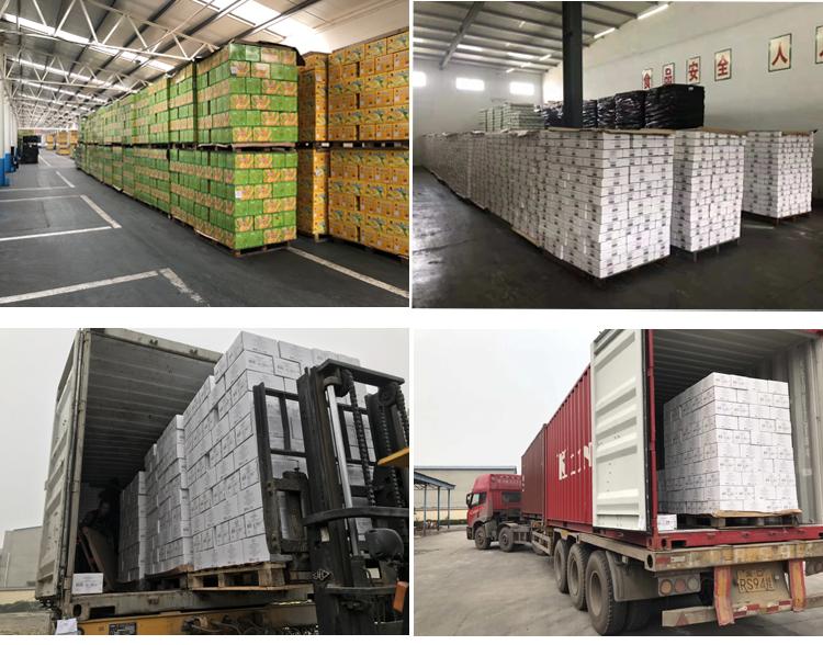 Großhandel konserven vakuumverpackt mais