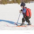 Factory Direct Sale Children Snow Skis and Poles Glass Fiber Sled Snowboard 100 120cm 4 4cm