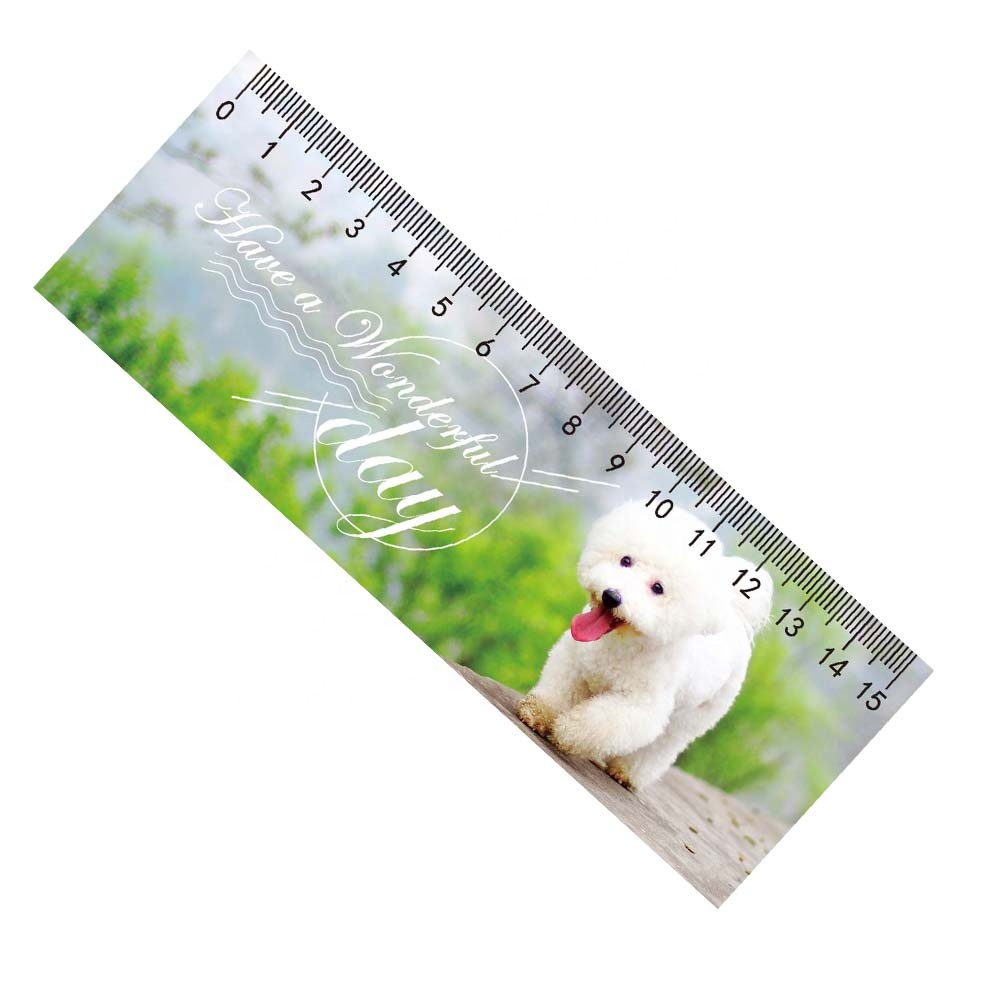 15cm School Office lenticular ruler with round corner for students