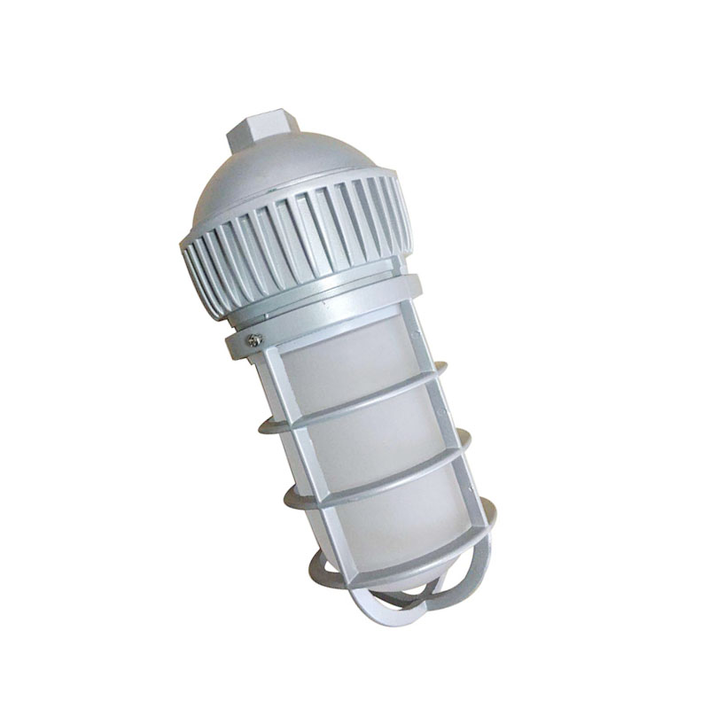 Outdoor Waterproof IP65 Rated Pendant Suspension Mount 10W 20W LED Vapor Tight Jelly Jar Light