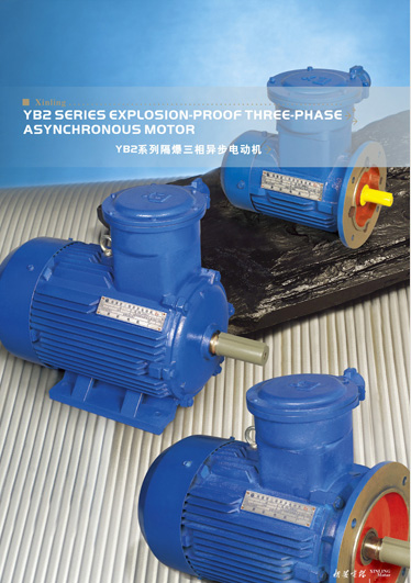 YB2 Series Explosion-Proof Three-phase Asynchronous Motor