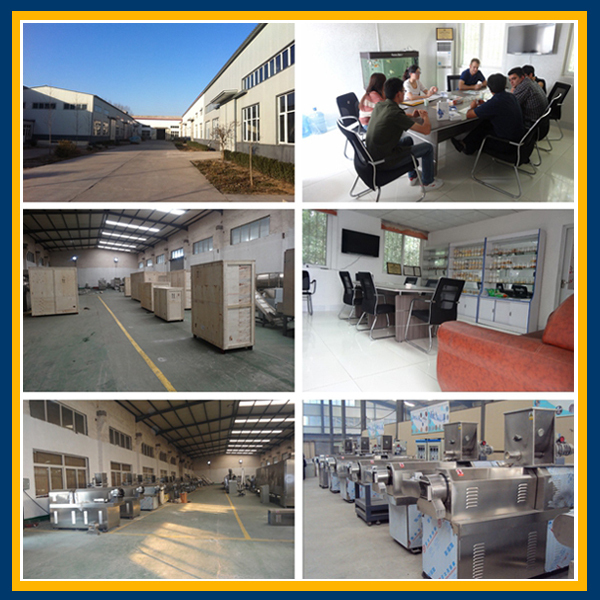 wheat rice corn snacks machine line machine from Jinan