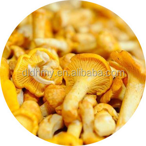 yellow dried chanterelle mushroom packing in 10kg bag