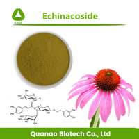 Echinacea Purpurea Extract Echinacoside 4% with Competitive Price