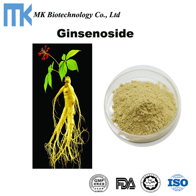 Ginsenosides,ginseng root extract, panax ginseng extract powder with GMP factory
