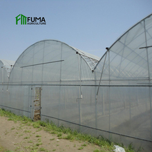 Hot galvanized steel frame Large low cost light deprivation smart automatic control commercial film greenhouse for sale